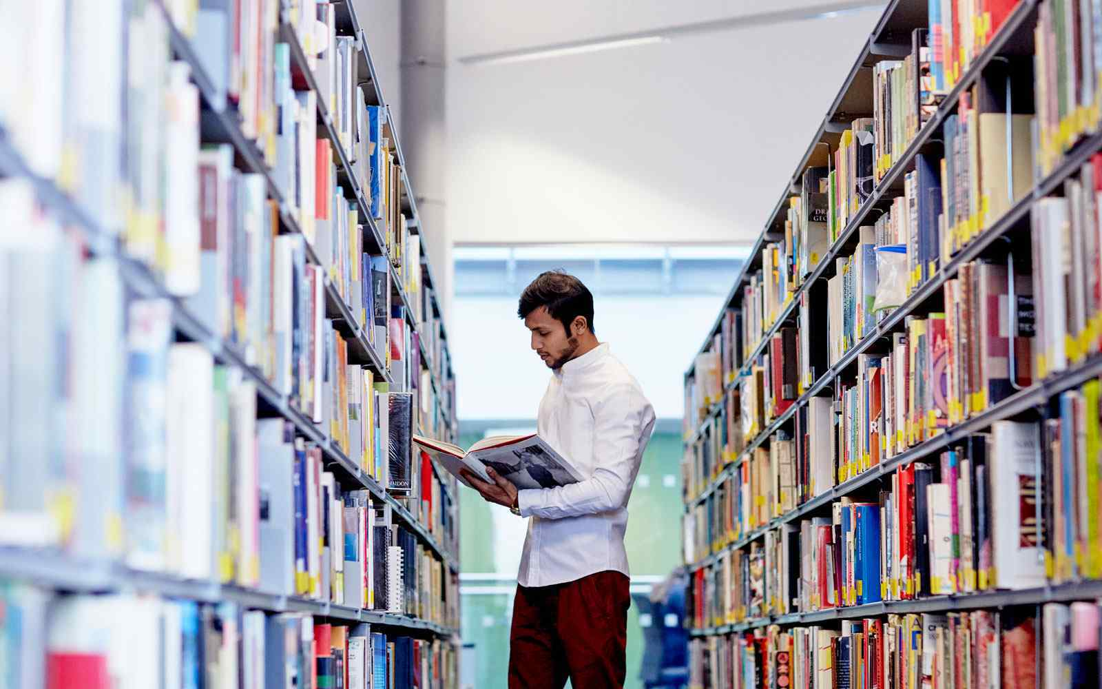Student in library opens book