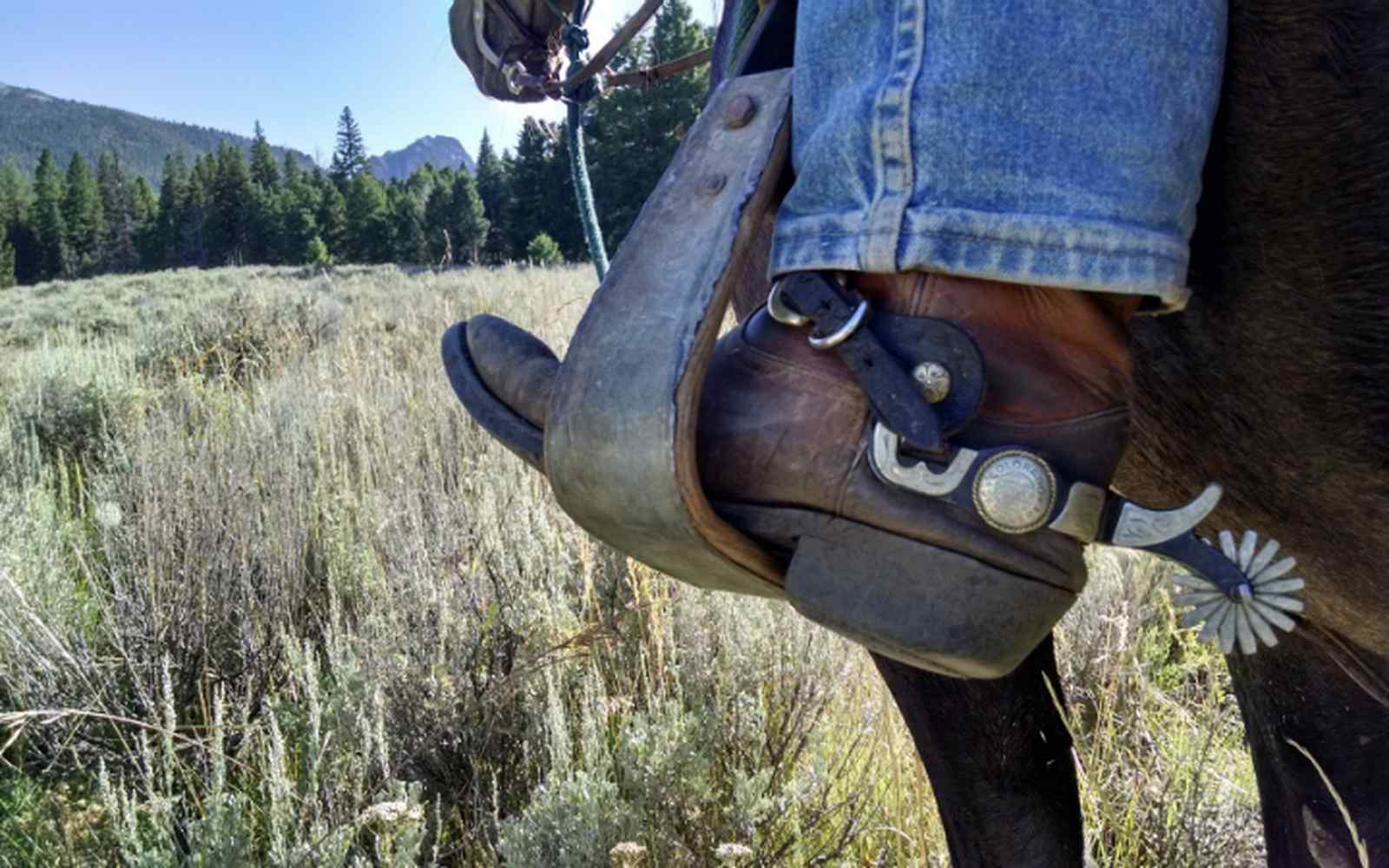 Cowboy boot with spurs