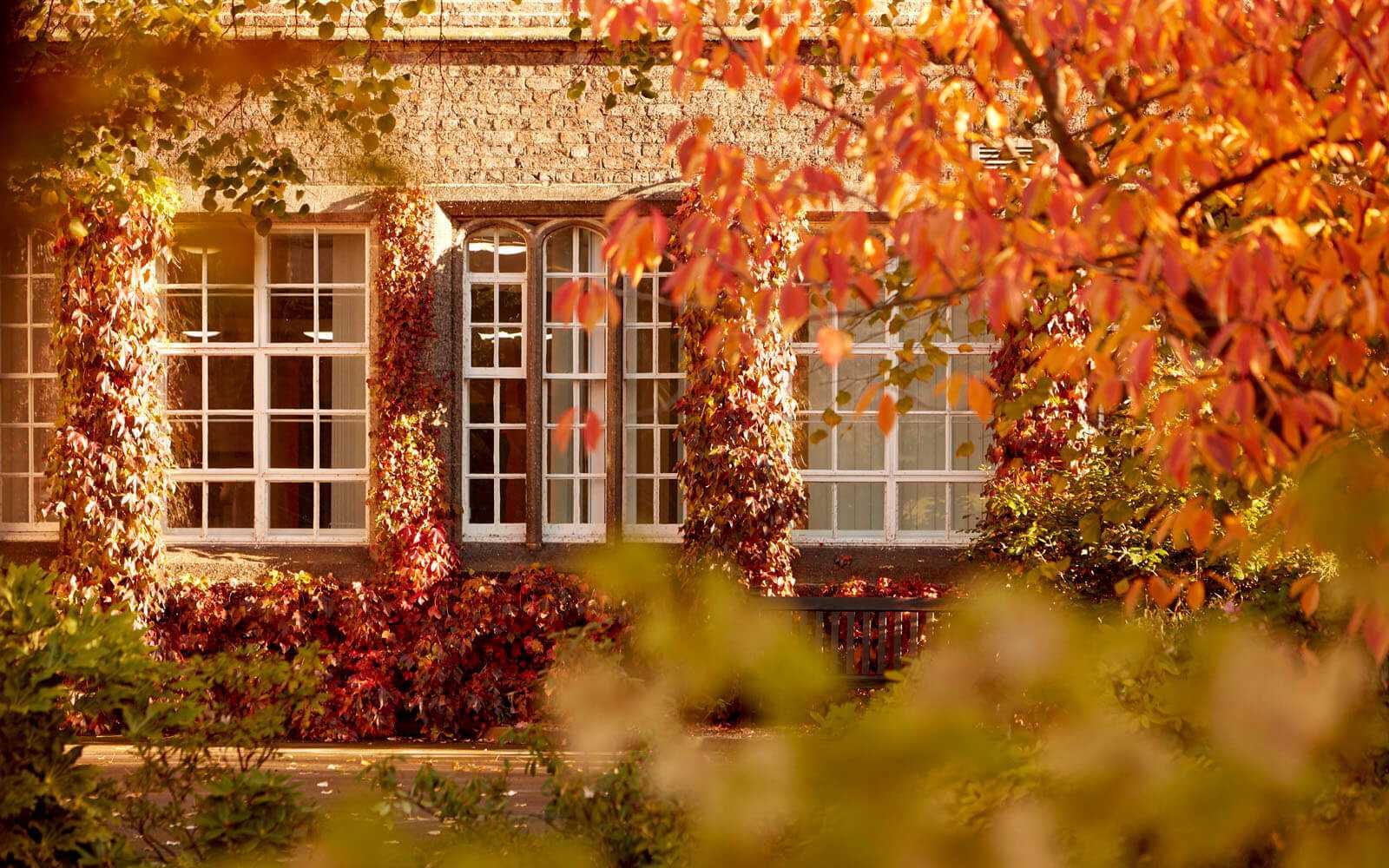 Campus building seen through trees