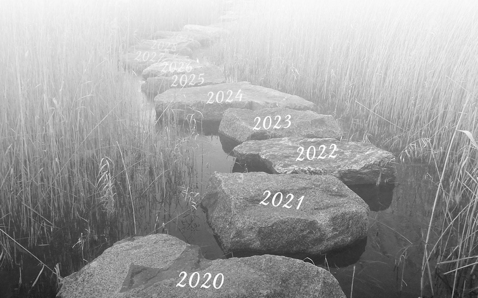 Stepping stones counting up in years