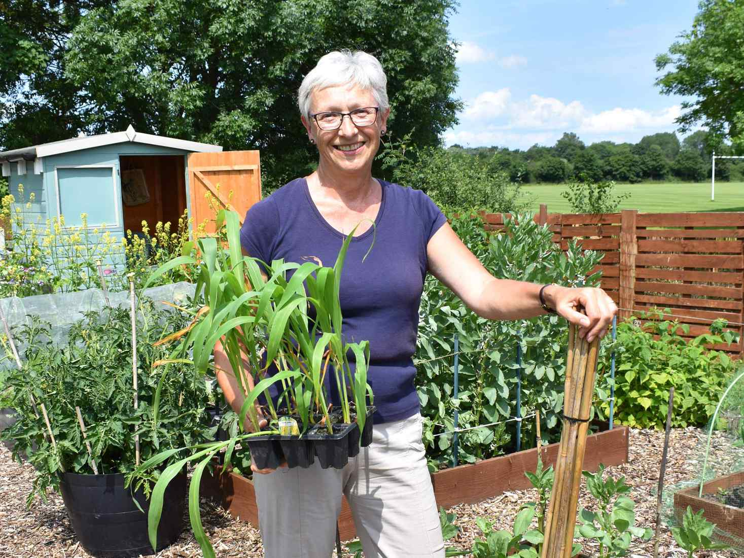 A smiling woman holding a tray of plants at the York St John allotment site