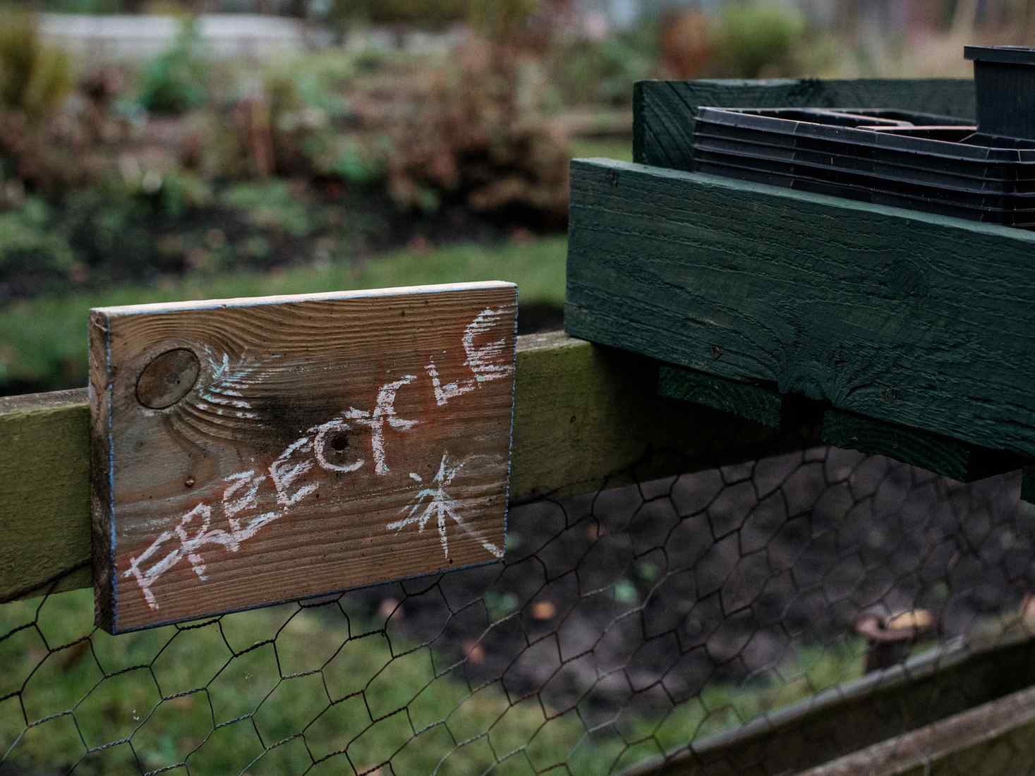 Close-up of a wooden sign reading 'Freecycle' at the York St John allotments