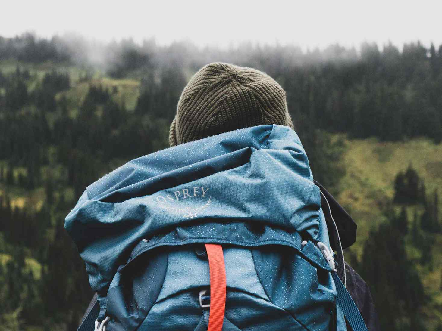 Student facing the landscape with a backpack